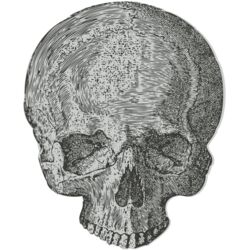 Medical Skull 2 Thumbnail