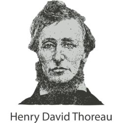 Henry David Thoreau Thumbnail