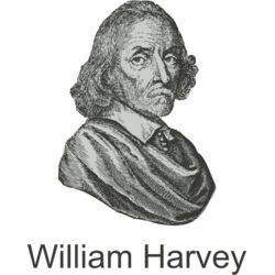 William Harvey Thumbnail