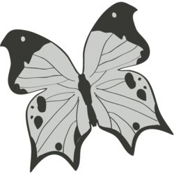 Girly Realistic Butterflies 12 Thumbnail