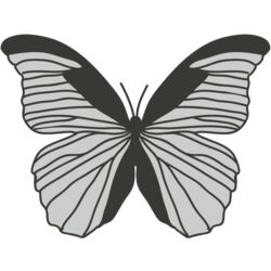Girly Realistic Butterflies 9 Thumbnail