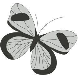 Girly Realistic Butterflies 2 Thumbnail